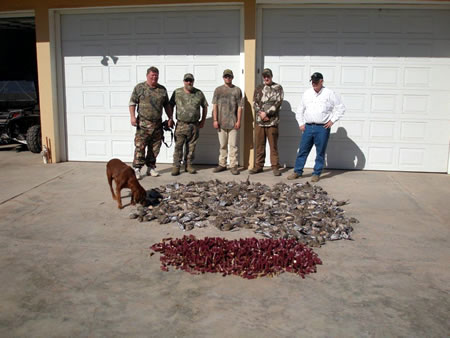 This father and son hunt, and a couple of other hunters from Iowa, had a nice morning dove hunt