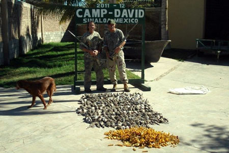 These are returning dove hunters that love to shoot